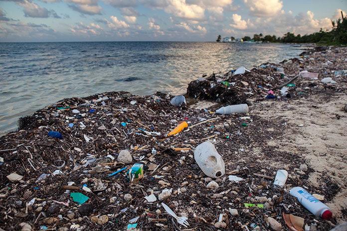 Zero waste w podróży